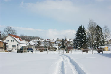 Winterbilder.jpg